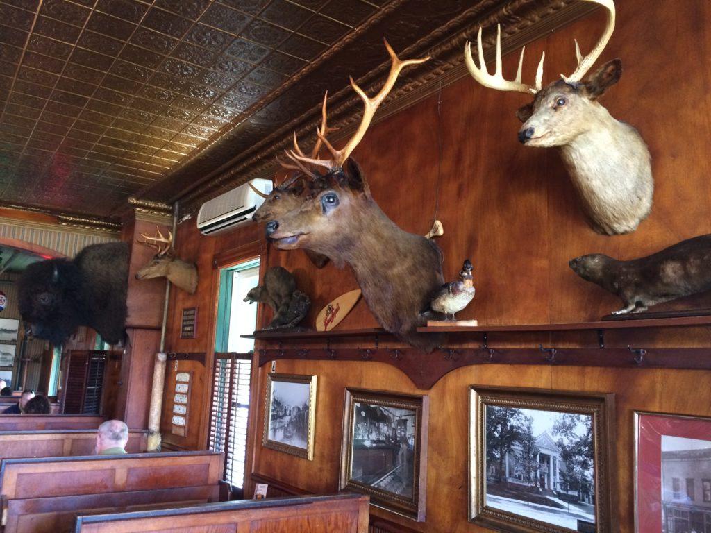 Stuffed animals at Sleder's Tavern at Traverse City Michigan