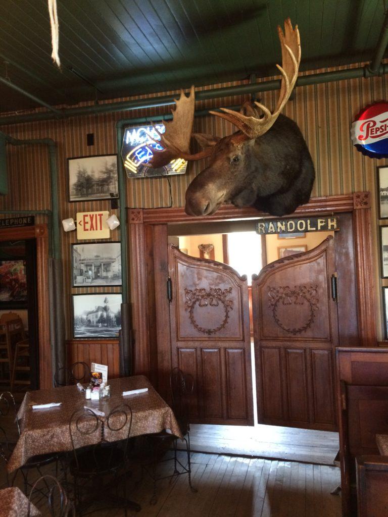 Randolph the moose at Sleder's Tavern at Traverse City Michigan