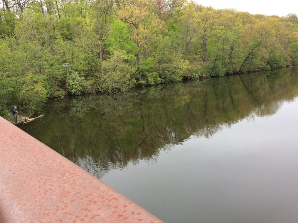 view of Huron River from the bridge at Barton Nature Area