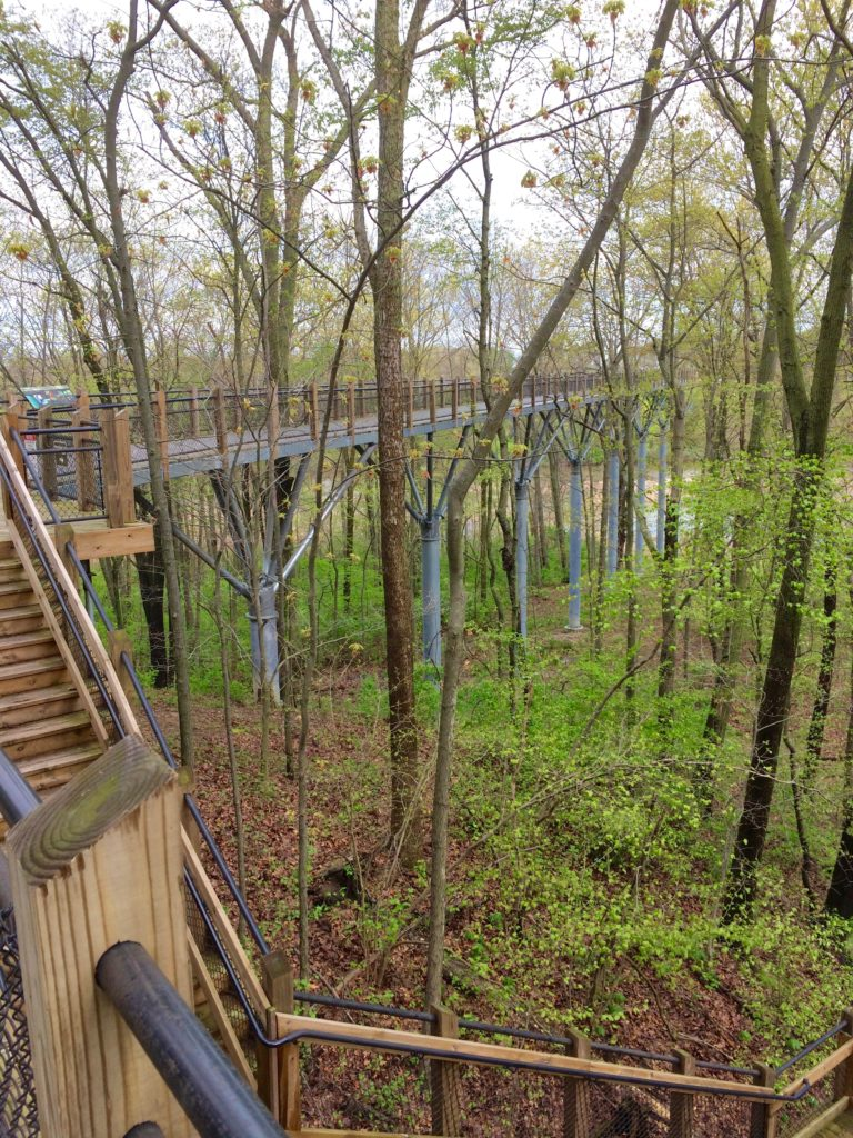 Elevated walkway at Galien River County Park